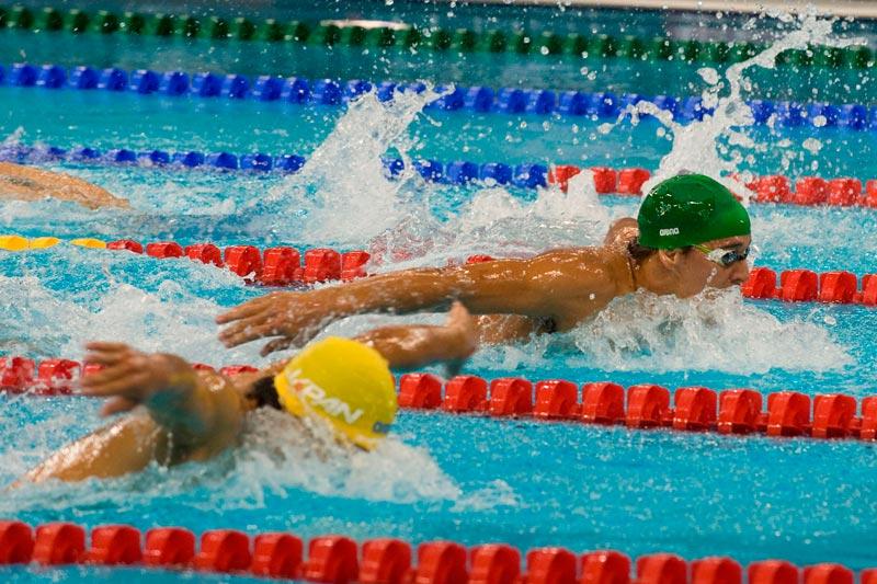 swim race11
