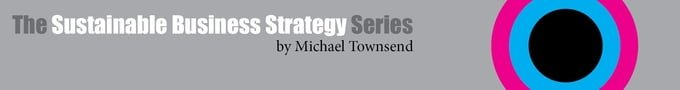 Sustainable Business Strategy Series