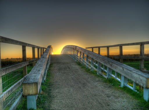 bridge to horizon