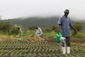 sustainable-agriculture-overview-XL_240144