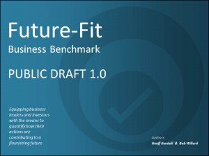 Future-Fit-Public-Draft