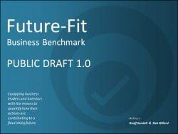 Future-Fit-Public-Draft