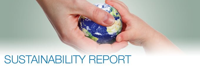 Image result for SUSTAINABILITY REPORTING images