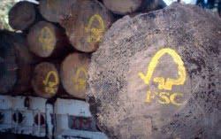FSC logs