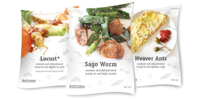 bugs entomo_packaging