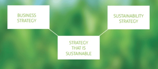 sustainable business strategy