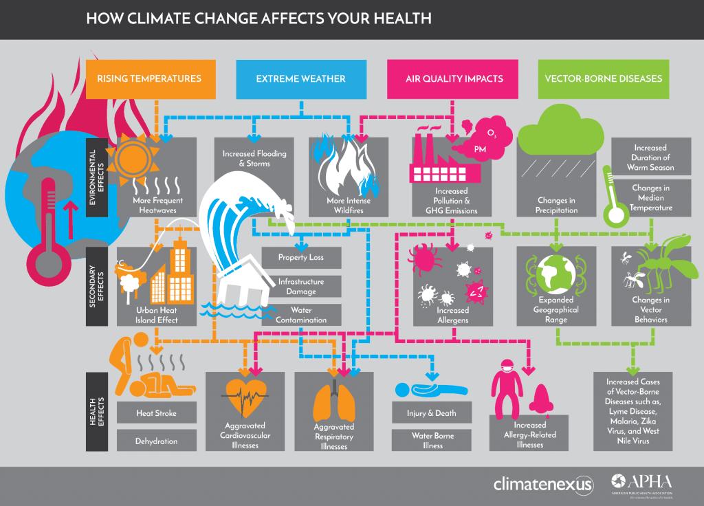 cc health