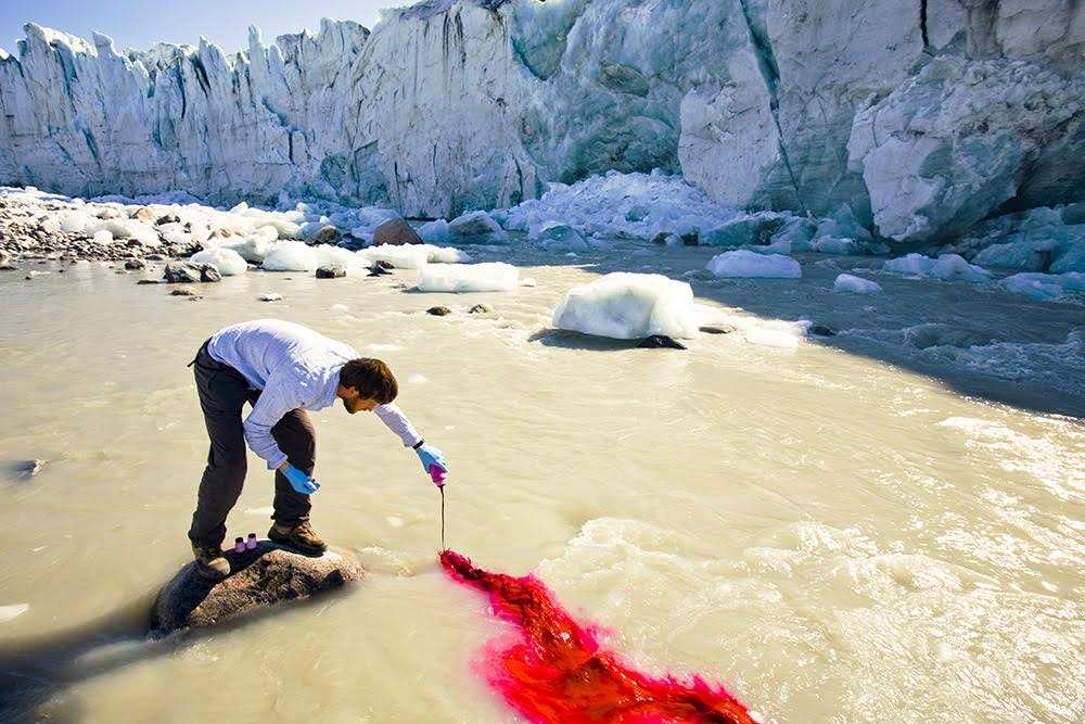 PHD scientist Ian Bartholomew using dye tracing techniques as part of a study to measure the speed of the Russell Glacier near Kangerlussuag Greenland. The study is looking at how increasing quantities of melt water caused by climate change are affecting the glaciers speed which like most glaciers in Greenland has sped up considerably in the last 20 years. As part of the study reflective poles were drilled 4 metres into the ice to measure their speed at various positions on the glacier. Within a month all the poles had fallen over as the glacier melted down over 4 metres. The study conclusively showed that the speed of the glacier was directly linked to the amount of meltwater draining from its snout.